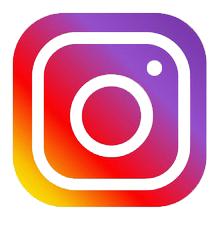 Vanimal Instagram Page